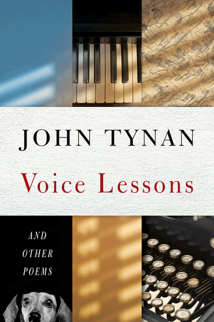 Voice Lessons Cover